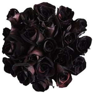 12 Fresh Cut Black Roses