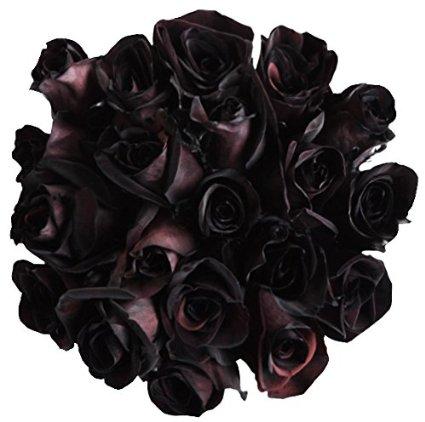 12 Fresh Cut Black Roses I Want It Black