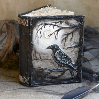 Crow Journal and Black Feather Pen